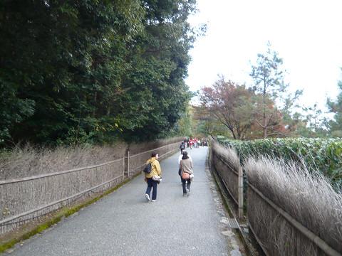 亀山公園道中50.jpg