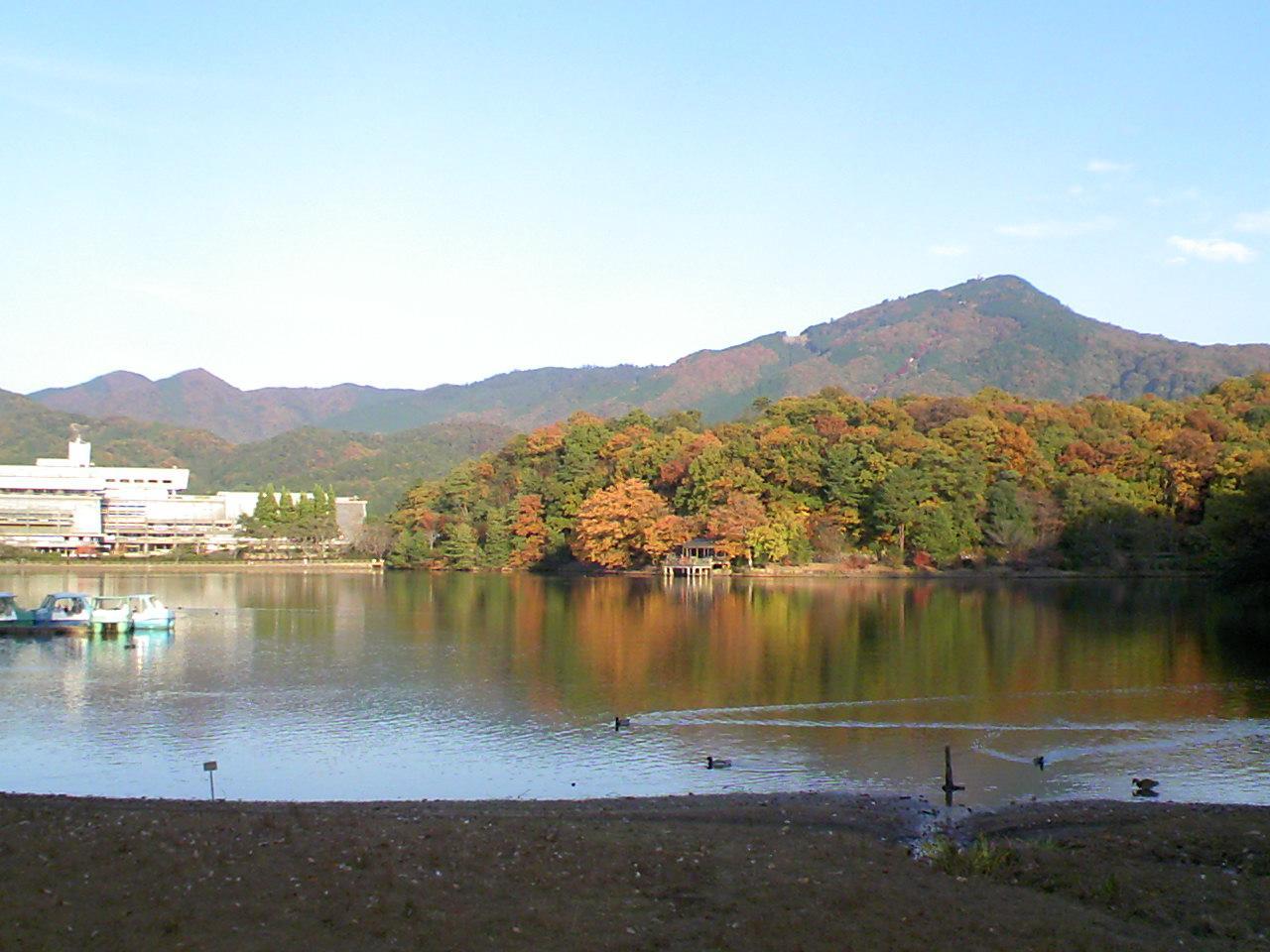 20101119紅葉宝ヶ池.JPG