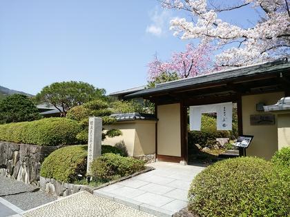 玄関桜4.jpg