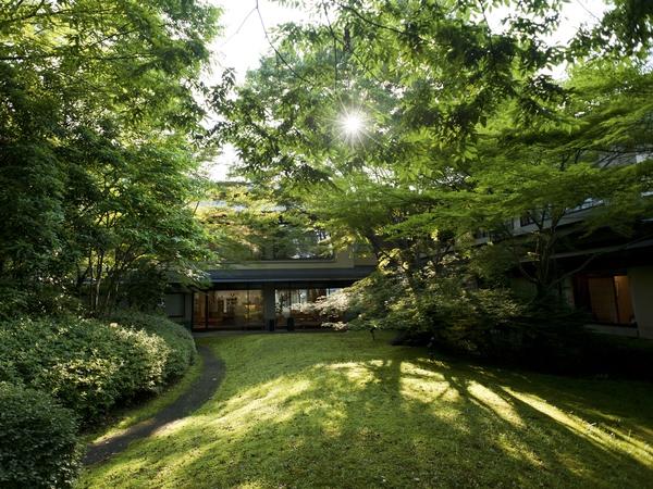 中庭緑.jpg
